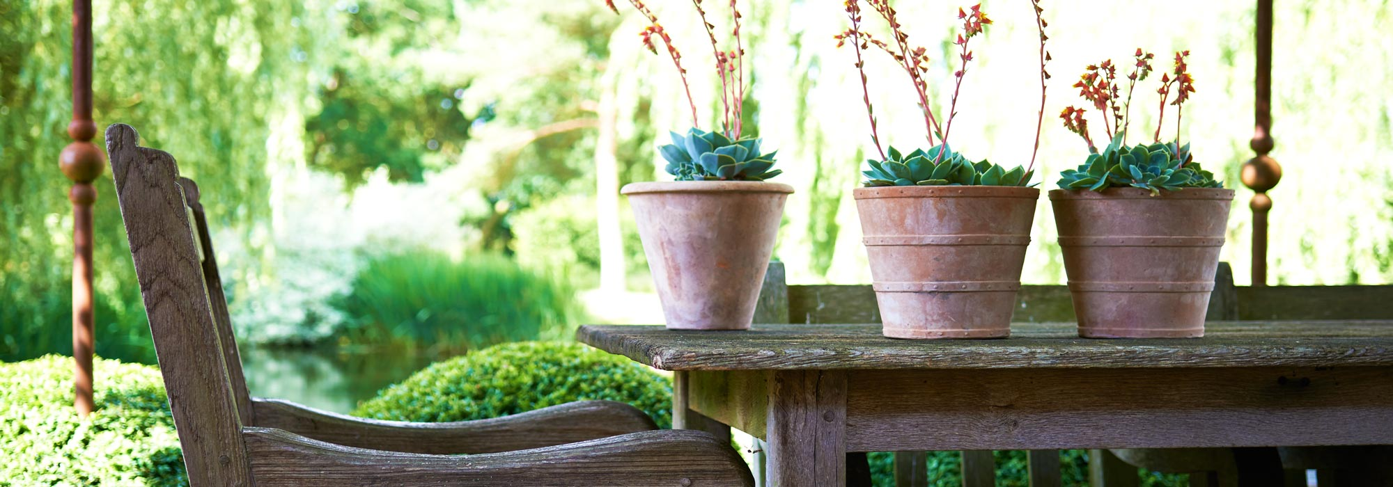 Italian Terrace large terracotta pots