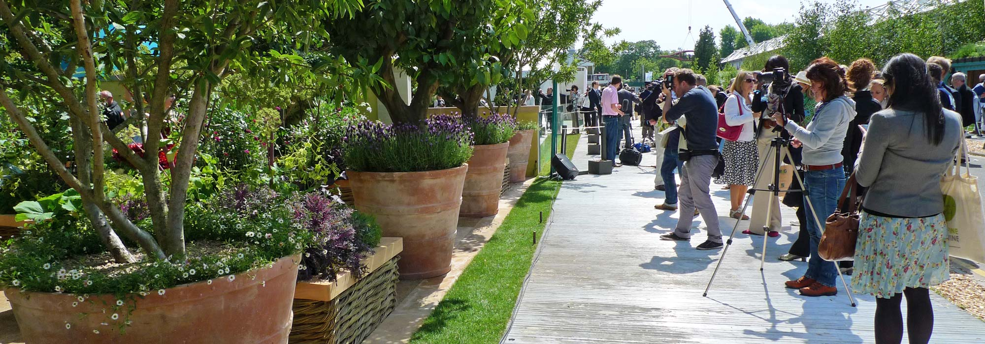 Italian terrace terracotta pots