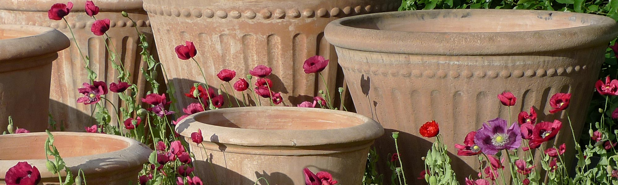 Terracotta pots size guide